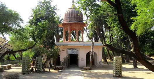 bharatpur bird sanctuary, bharatpur wildlife sanctuary, places to visit in bharatpur, bharatpur tourism, delhi to bharatpur bus, tempo traveller on rent, tata luxury bus, travel agency in delhi