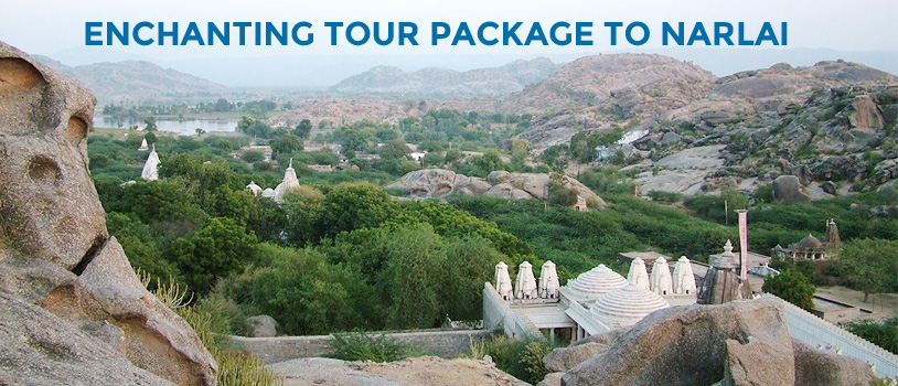 Delhi to Rajasthan by bus, Rajasthan points of interest, Narlai sightseeing, Kumbhalgarh Fort, Aravali Tent Resort at Udaipur